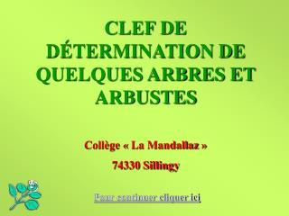 CLEF DE DÉTERMINATION DE QUELQUES ARBRES ET ARBUSTES Collège «La Mandallaz» 74330 Sillingy