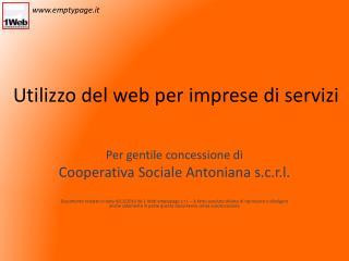 Utilizzo del web per imprese di servizi