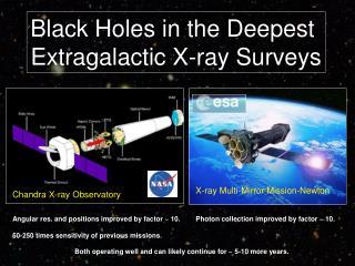 Black Holes in the Deepest  Extragalactic X-ray Surveys