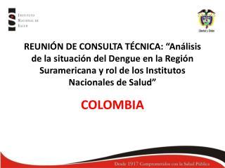 REUNI N DE CONSULTA T CNICA:  An lisis de la situaci n del Dengue en la Regi n Suramericana y rol de los Institutos  Nac