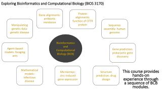 Exploring Bioinformatics and Computational Biology (BIOS 3170)