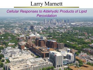 Larry Marnett