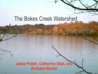The Bokes Creek Watershed