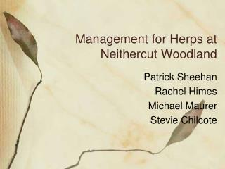 Management for Herps at Neithercut Woodland