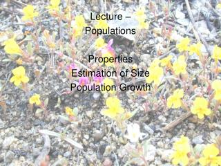 Lecture – Populations Properties Estimation of Size Population Growth