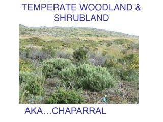 TEMPERATE WOODLAND & SHRUBLAND