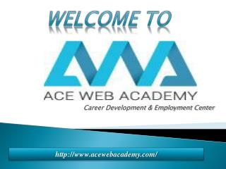 ACE Web Academy a Web Design Training Institute in Hyderabad