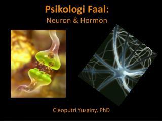 Psikologi Faal: Neuron & Hormon