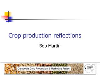 Crop production reflections