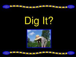 Dig It?