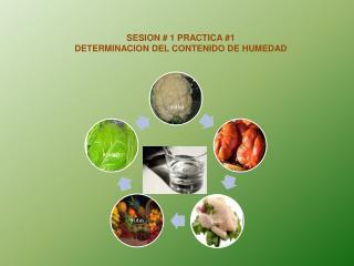 SESION # 1 PRACTICA #1 DETERMINACION DEL CONTENIDO DE HUMEDAD