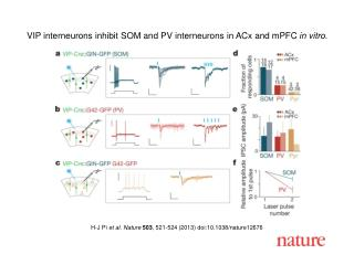 H-J Pi  et al. Nature  503 , 521-524 (2013) doi:10.1038/nature12676