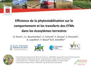 Efficience  de la phytostabilisation  sur  le comportement et les  transferts  des ETMs
