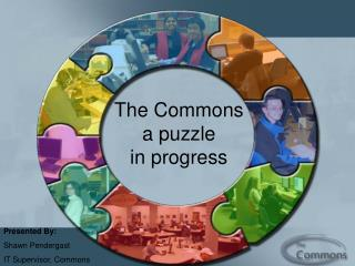 The Commons a puzzle in progress