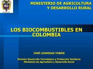 LOS BIOCOMBUSTIBLES EN COLOMBIA