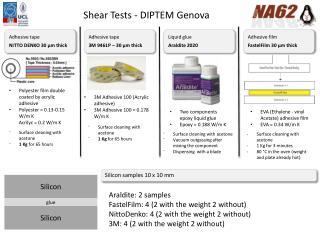 Shear  Tests - DIPTEM  Genova