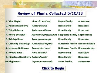 Review of Plants Collected 5/10/13