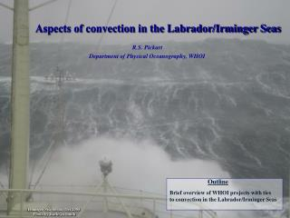 Aspects of convection in the Labrador/Irminger Seas