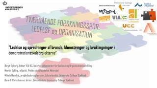 Birgit Ryberg, lektor VIA UC, leder af  videncenter  for Ledelse og Organisationsudvikling