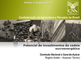 Comissão Nacional e Cana-de-Açúcar Rogério Avellar – Assessor Técnico
