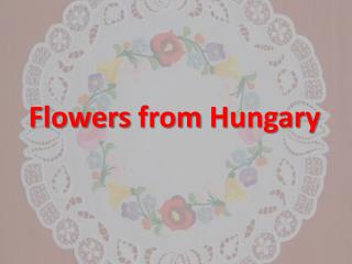 Flowers from  Hungary