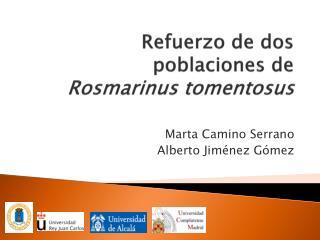 Refuerzo de dos poblaciones de Rosmarinus tomentosus