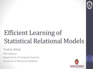 Efficient Learning of Statistical Relational Models