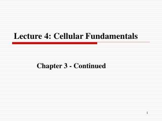 Lecture 4: Cellular Fundamentals