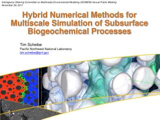 Hybrid Numerical Methods for Multiscale Simulation of Subsurface Biogeochemical Processes
