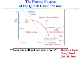 The Plasma Physics  of the Quark Gluon Plasma