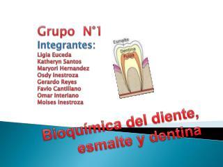 Bioquímica del diente, esmalte y dentina