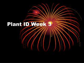 Plant ID Week 3