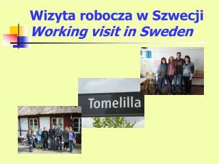 Wizyta robocza w Szwecji Working visit in Sweden