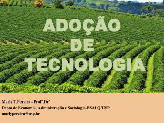 Marly T.Pereira  -  Profª.Dr ª Depto  de  Economia ,  Administração  e  Sociologia -ESALQ/USP