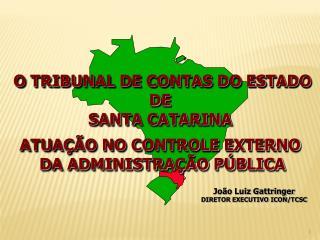 O TRIBUNAL DE CONTAS DO ESTADO DE  SANTA CATARINA  ATUAÇÃO NO CONTROLE EXTERNO