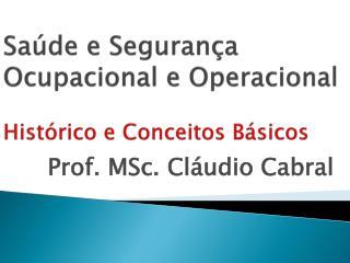 Saúde e Segurança Ocupacional e Operacional Histórico e Conceitos Básicos