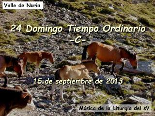 24 Domingo Tiempo Ordinario -C-