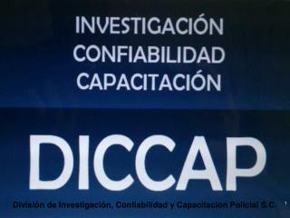 División de Investigación, Confiabilidad y Capacitación Policial S.C.