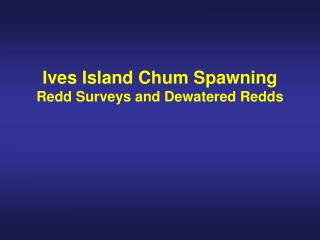 Ives Island Chum Spawning Redd Surveys and Dewatered Redds