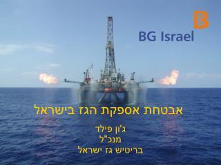 אבטחת אספקת הגז בישראל