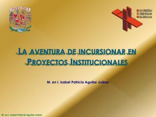 La aventura de incursionar en Proyectos Institucionales
