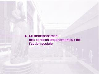 Le fonctionnement  des conseils départementaux de l'action sociale