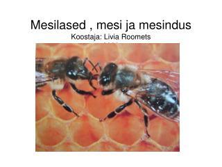 Mesilased , mesi ja mesindus Koostaja: Livia Roomets 2009