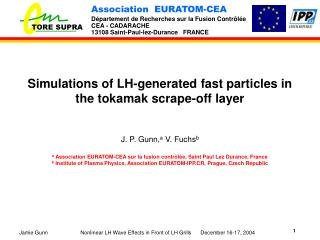 Simulations of LH-generated fast particles in the tokamak scrape-off layer