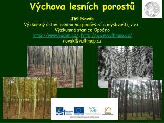 Výchova lesních porostů Jiří Novák Výzkumný ústav lesního hospodářství a myslivosti, v.v.i.,