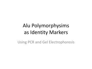 Alu Polymorphysims as Identity Markers