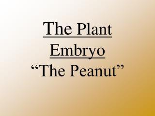 "The  Plant Embryo ""The Peanut"""