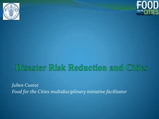 Disaster Risk Reduction and Cities