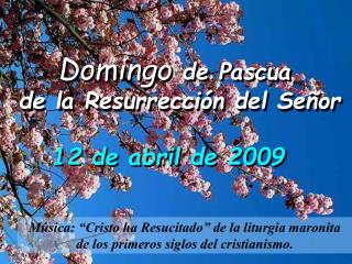 Domingo  de Pascua   de la Resurrecci�n del Se�or
