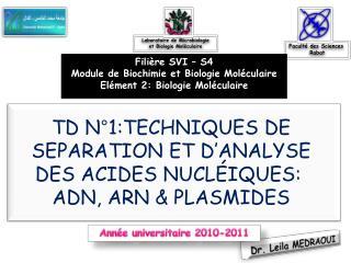 TD N°1:TECHNIQUES DE SEPARATION ET D'ANALYSE DES ACIDES NUCLÉIQUES:  ADN, ARN & PLASMIDES